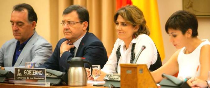 Dolores Delgado comparece en el Senado