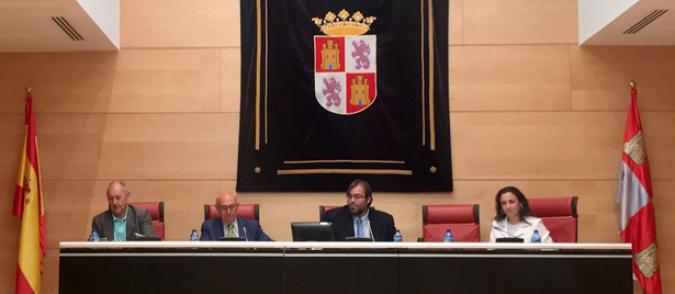 Juan Pérez en las Cortes de Castilla y León