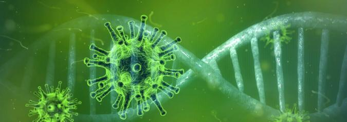 Imagen del coronavirus