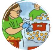 mujer trabaja con naranjas