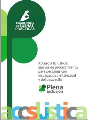 Ver Acceso a la justicia: ajustes de procedimiento para personas con discapacidad intelecual o del desarrollo