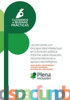 Ver Las personas con discapacidad intelectual en la función pública: informe sobre situación, recomendaciones y apoyos tecnológicos