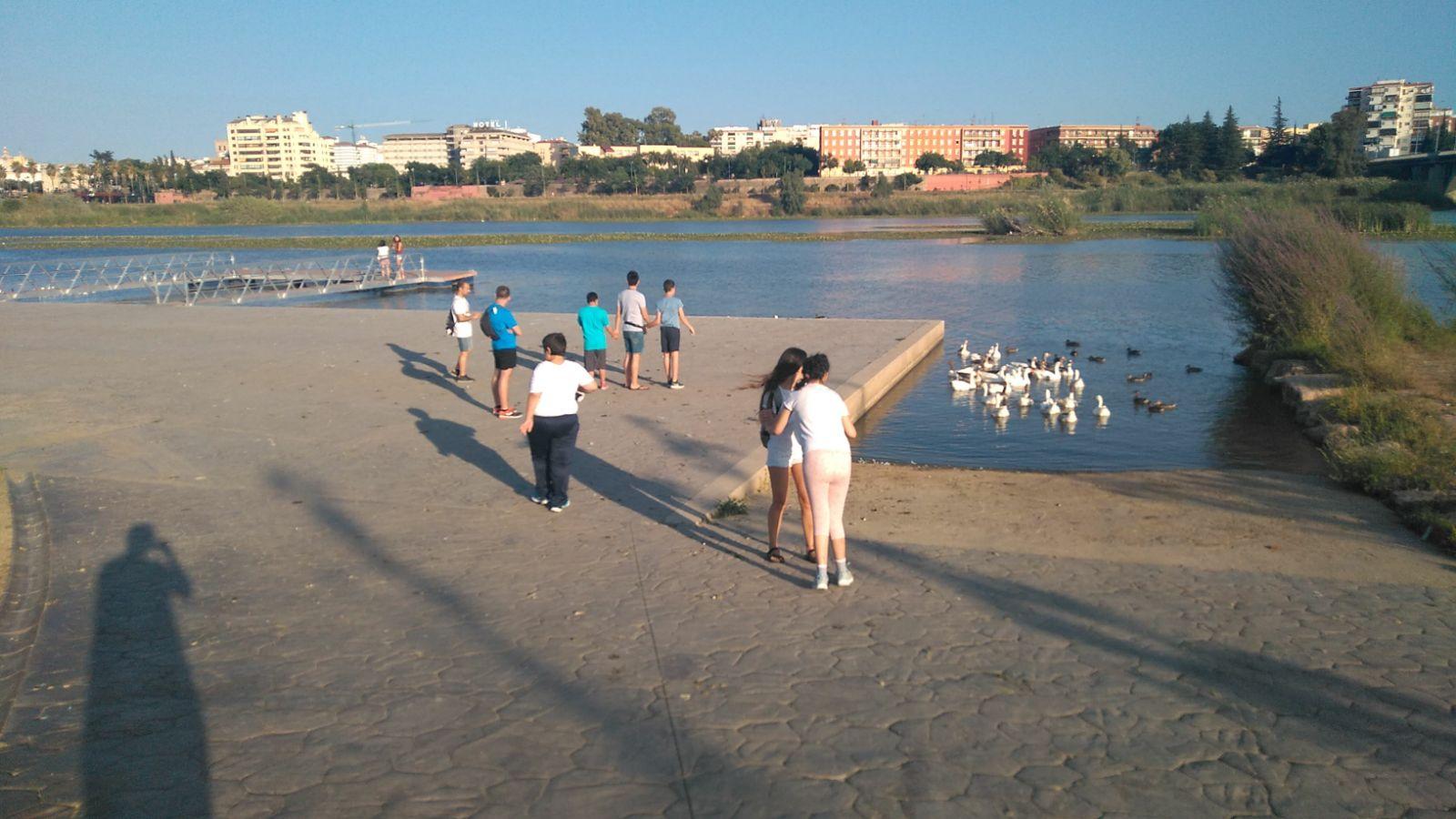 Ir a : Plena inclusión Extremadura denuncia la carencia de campamentos de verano, urbanos y vacacionales, inclusivos