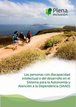Ver Las personas con discapacidad intelectual o del desarrollo en el Sistema para la Autonomía y Atención a la Dependencia (SAAD)