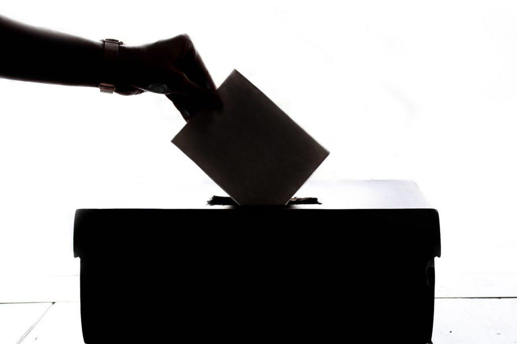 Ir a : Las personas con discapacidad intelectual vuelven a votar este domingo en Euskadi y Galicia