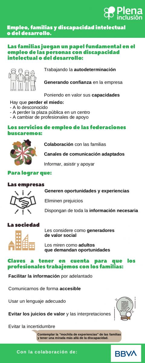 captura de la infografía sobre empleo, familias y discapacidad