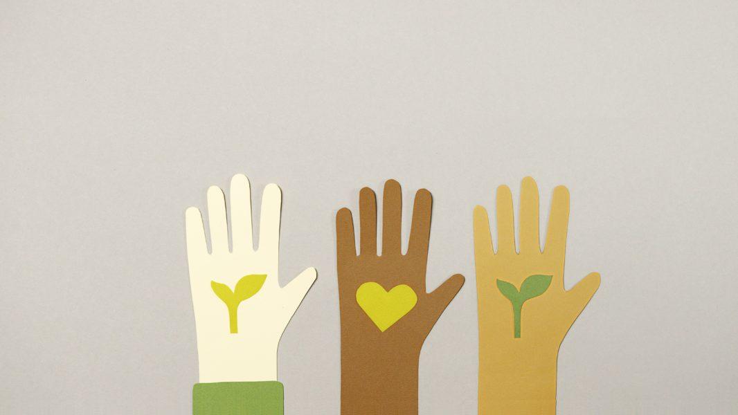 ilustración manos corazón hojas voluntariado dar ayudar