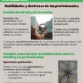 portada Infografía 4. Empleo, familia y discapacidad intelectual o del desarrollo